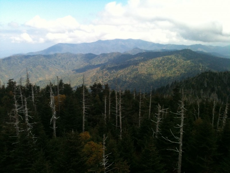 Clingmans Dome- Great Smokey Mountains National Park